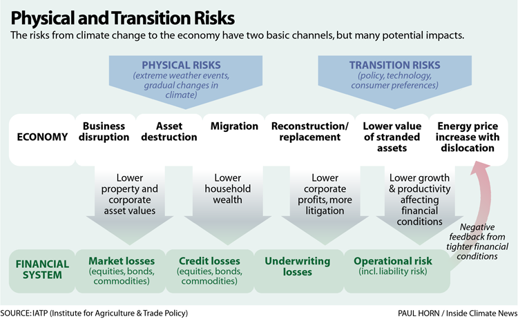 Physical and Transition Risks