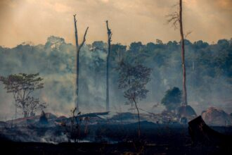 Smokes rises from forest fires in Altamira, Para state, Brazil, in the Amazon basin, on Aug. 27, 2019. Credit: Joao Laet/AFP via Getty Images