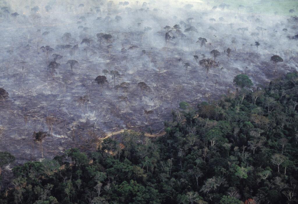 Aerial view of Amazon rainforest burning, farm management with deforestation. Credit: Ricardo Funari/Brazil Photos/LightRocket via Getty Images