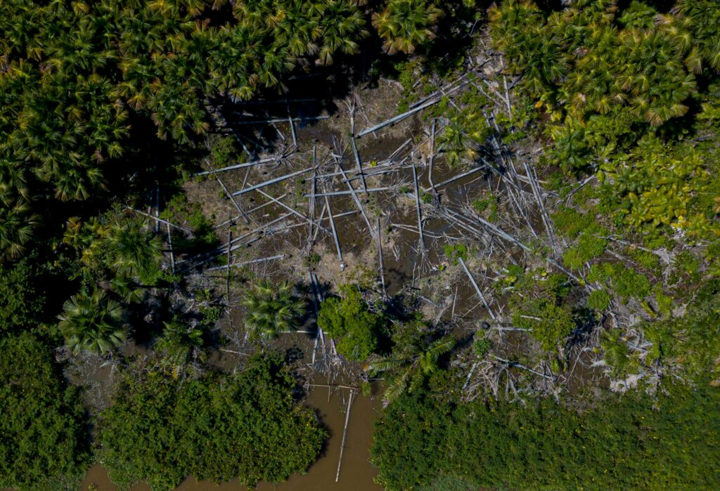 Aerial view of a deforested area in the municipality of Melgaco, Para State, Brazil, on July 30, 2020. Credit: Tarso Sarraf/AFP via Getty Images
