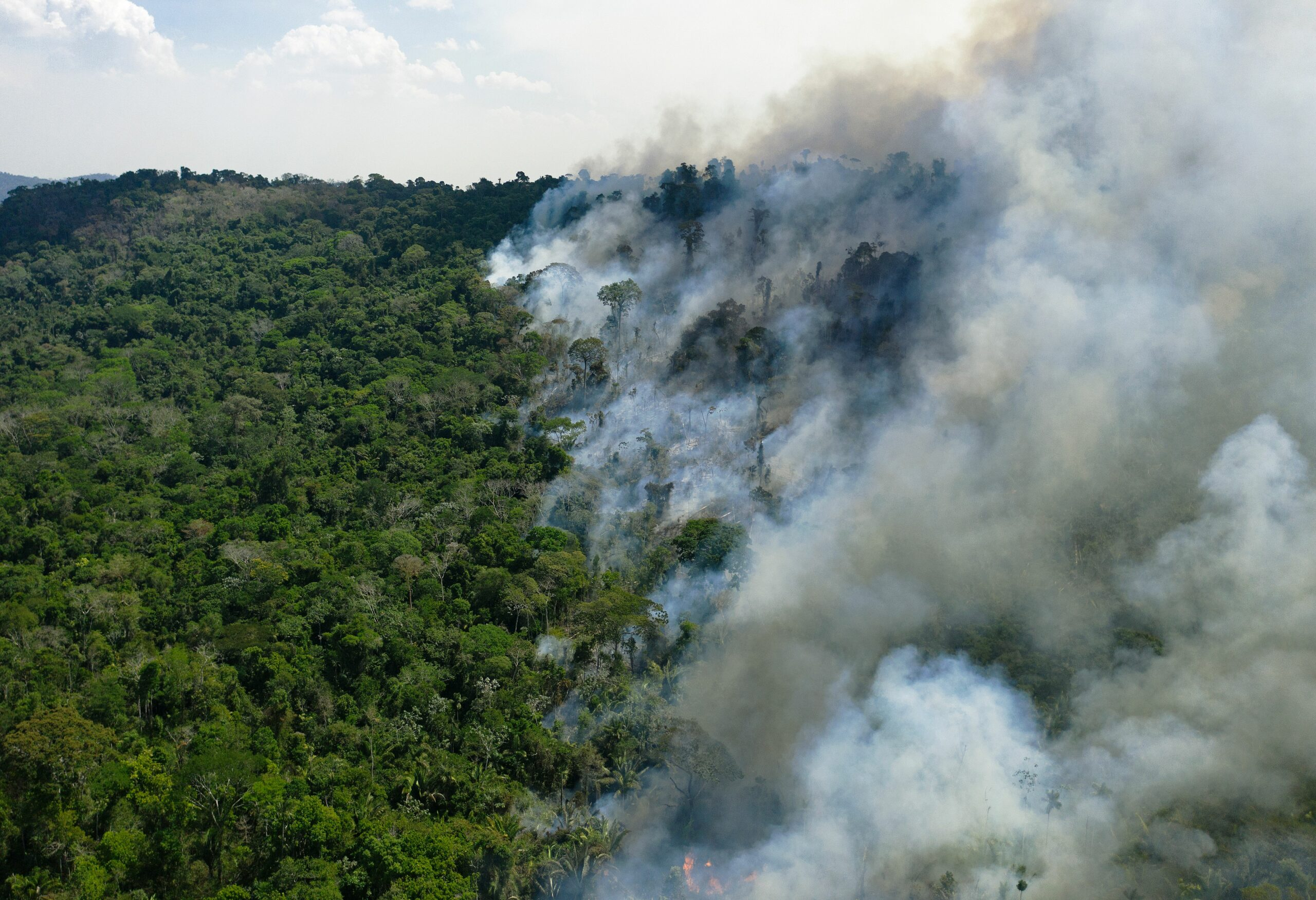 Aerial view of a burning area of Amazon rainforest reserve, south of Novo Progresso in Para state, on August 16, 2020. Credit: Florian Plaucheur/AFP via Getty Images