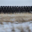 Pipes for the Keystone XL pipeline stacked in a yard near Oyen, Alberta, Canada, on Tuesday, Jan. 26, 2021. Credit: Jason Franson/Bloomberg via Getty Images