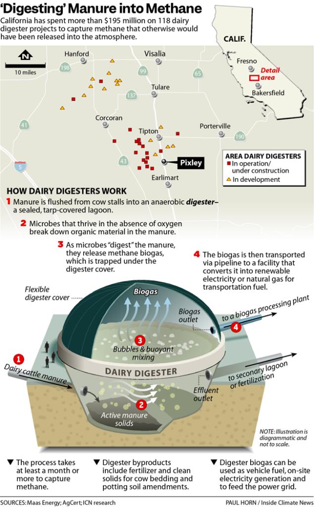 'Digesting' Manure into Methane