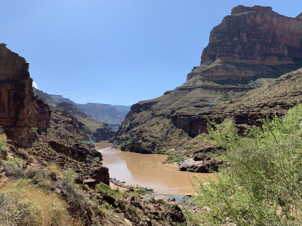Looking upstream from Deer Creek Falls overlook in 2019, it's possible to see what the spring runoff normally looks like on the Colorado River—full of sediment from side streams. Credit: Judy Fahys/Inside Climate News