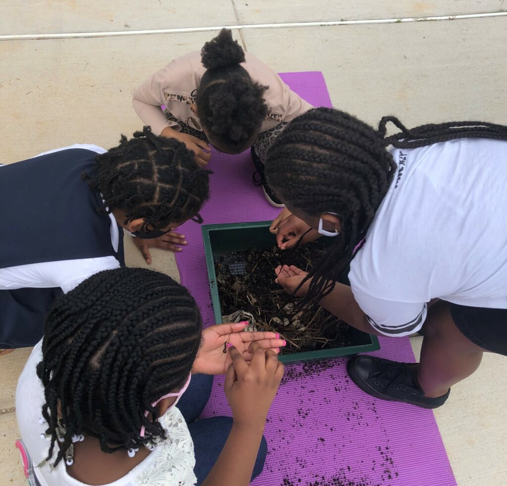 Students exploring worm compost bins in May, 2021. Photo courtesy of Anne Rosenthal