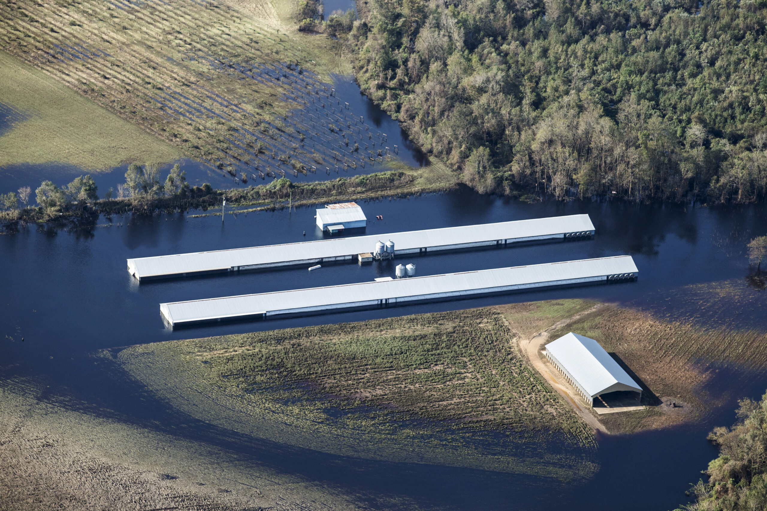 A flooded poultry farm stands in this aerial photograph taken above Chinquapin, North Carolina on Friday, Sept. 21, 2018 after Hurricane Florence. Credit: Alex Wroblewski/Bloomberg via Getty Images