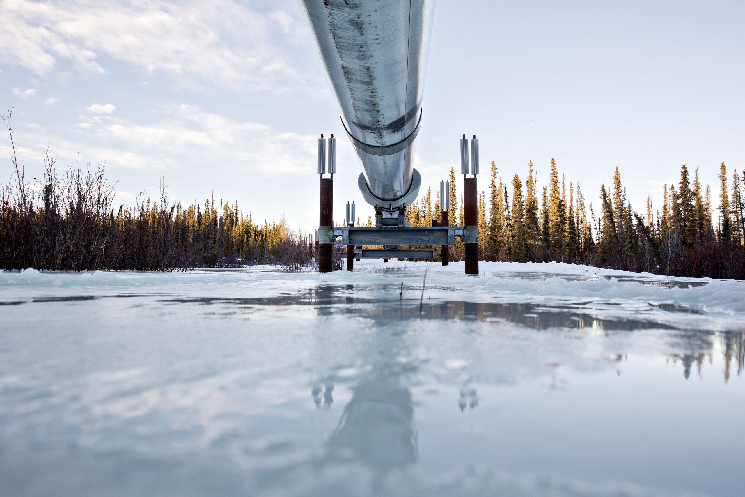 The Trans Alaska Pipeline System stands near Copperville, Alaska, on Tuesday, Feb. 14, 2017. Credit: Daniel Acker/Bloomberg via Getty Images